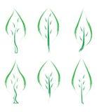 Το σύνολο πράσινου βγάζει φύλλα Στοκ Εικόνες