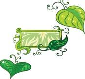 Το σύνολο σχετικών με τη φύση στοιχείων όπως βγάζει φύλλα και κισσός με ένα πρόσθετο πρότυπο εμβλημάτων στοκ εικόνες