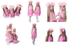 Το σύνολο λατρευτών μικρών κοριτσιών θέτει στα ρόδινα φορέματα στοκ εικόνες