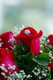 Το σύνολο γαμήλιων δαχτυλιδιών στο κόκκινο αυξήθηκε ληφθείσα κινηματογράφηση σε πρώτο πλάνο Στοκ Φωτογραφία