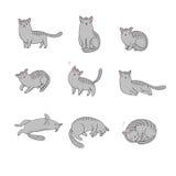 Το σύνολο διαφορετικού doodle θέτει τη γάτα pets ελεύθερη απεικόνιση δικαιώματος
