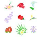 Το σύνολο λουλουδιών Στοκ Εικόνες
