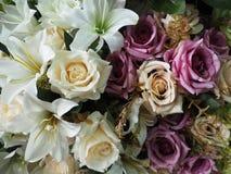 Το σύνολο χρώματος των ανθίσεων λουλουδιών Στοκ Εικόνα
