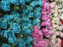 Το σύνολο χρώματος των ανθίσεων λουλουδιών Στοκ Φωτογραφίες