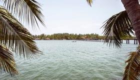 Το τέλμα-Κεράλα αυτό είναι το τέλμα Poorvar και βρίσκεται στο Κεράλα Ινδία στοκ φωτογραφίες