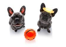 Το τέχνασμα σκυλιών φαντασμάτων αποκριών ή μεταχειρίζεται Στοκ φωτογραφίες με δικαίωμα ελεύθερης χρήσης