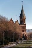 Το τετραγωνικό πάρκο σμιλεύει τους μολύβδους στον καθεδρικό ναό Konigsberg σε Kaliningrad Στοκ Εικόνα