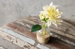 το τεχνητό λουλούδι ανασκόπησης απομόνωσε το λευκό Στοκ φωτογραφίες με δικαίωμα ελεύθερης χρήσης