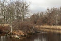 Το τμήμα του ποταμού Mattapoisett κάλεσε μιά φορά το τρέξιμο ρεγγών στοκ εικόνα