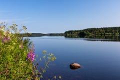 Το τοπίο με τον ποταμό και τα λουλούδια στο πρώτο πλάνο στοκ εικόνα