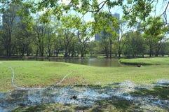 Το τοπίο πυροβόλησε στο πάρκο αριθ. 2 στοκ φωτογραφίες