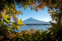 Το τοπίο της άποψης το υποστήριγμα Φούτζι και φωτεινό κόκκινο πλαίσιο Kawaguchiko φύλλων σφενδάμου το πρωί είναι ένα τουριστικό α στοκ εικόνες με δικαίωμα ελεύθερης χρήσης