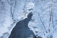 Το τοπίο του μικρού ποταμού ή το ρυάκι στο όμορφο χειμερινό δάσος ή στο πάρκο στοκ εικόνα