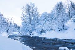 Το τοπίο του μικρού ποταμού ή το ρυάκι στο όμορφο χειμερινό δάσος ή στο πάρκο στοκ φωτογραφία