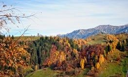 Το τοπίο φθινοπώρου βουνών με το ζωηρόχρωμο δάσος στοκ εικόνες