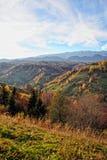 Το τοπίο φθινοπώρου βουνών με το ζωηρόχρωμο δάσος στοκ φωτογραφίες