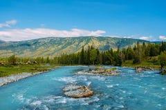 Το τοπίο Altai με τον ποταμό βουνών και τους πράσινους βράχους, Σιβηρία, Δημοκρατία Altai, Ρωσία στοκ φωτογραφία με δικαίωμα ελεύθερης χρήσης