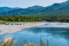 Το τοπίο Altai με τον ποταμό βουνών και τους πράσινους λόφους, Σιβηρία, Δημοκρατία Altai, Ρωσία στοκ εικόνα με δικαίωμα ελεύθερης χρήσης