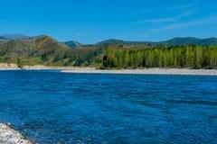 Το τοπίο Altai με τον ποταμό Katun βουνών και τους πράσινους λόφους, Σιβηρία στοκ φωτογραφία με δικαίωμα ελεύθερης χρήσης