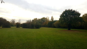 Το τοπικό πάρκο του Γκλούτσεστέρ μου Στοκ φωτογραφίες με δικαίωμα ελεύθερης χρήσης