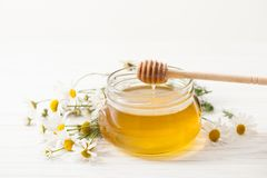 Το τρέχον μέλι με τα chamomile λουλούδια σε έναν άσπρο πίνακα Στοκ εικόνες με δικαίωμα ελεύθερης χρήσης