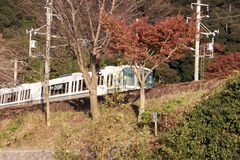 Το τραίνο της γραμμής sagano JR στις διαδρομές σιδηροδρόμου με την άποψη φθινοπώρου Στοκ Φωτογραφία