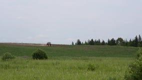 Το τρακτέρ οργώνει τον τομέα γεωργικά μηχανήματα σε έναν ορίζοντα φιλμ μικρού μήκους