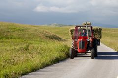 Το τρακτέρ φέρνει το σανό στο δρόμο στην εθνική επιφύλαξη Durmitor, Μαυροβούνιο Στοκ φωτογραφίες με δικαίωμα ελεύθερης χρήσης