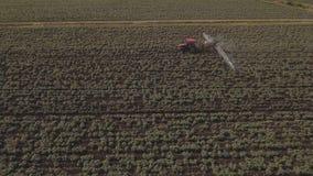 Το τρακτέρ ψεκάζει τον τομέα πατατών λιπασμάτων Εναέριο βίντεο απόθεμα βίντεο