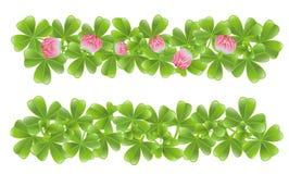 το τριφύλλι εμβλημάτων βγάζει φύλλα δύο Στοκ Εικόνες