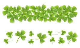 το τριφύλλι εμβλημάτων βγάζει φύλλα Στοκ Φωτογραφίες