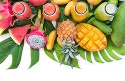 Το τροπικό επίπεδο βάζει τα τροπικά ζωηρόχρωμα φρούτα τοπ άποψης Στοκ φωτογραφία με δικαίωμα ελεύθερης χρήσης