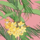 Το τροπικό floral υπόβαθρο θερινών άνευ ραφής σχεδίων με το plumeria ανθίζει με τα φύλλα και τους φοίνικες διανυσματική απεικόνιση