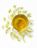 Το τσάι από τα λουλούδια με τις επανθίσεις των lindens περίπου ένα φλυτζάνι σε ένα άσπρο υπόβαθρο Τοπ όψη Κάθετη φωτογραφία Στοκ εικόνες με δικαίωμα ελεύθερης χρήσης