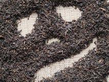 Το τσάι γιορτάζει αποκριές Κινεζικό τσάι Puer που σχεδιάζεται με μορφή μιας κολοκύθας αποκριών Στοκ φωτογραφίες με δικαίωμα ελεύθερης χρήσης