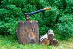 Το τσεκούρι είναι κολλημένο σε μια σύνδεση ένα υπόβαθρο ενός ιουνιπέρου στοκ φωτογραφία με δικαίωμα ελεύθερης χρήσης
