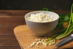 Το τυρί εξοχικών σπιτιών ή η στάρπη στο κύπελλο και το φρέσκο πράσινο χορτάρι ως συστατικά για τα σπιτικά τρόφιμα διατροφής στον  Στοκ Φωτογραφίες