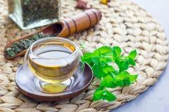 Το υγιές βοτανικό τσάι μεντών στο ασιατικό φλυτζάνι γυαλιού με φρέσκο peppermint και το τσάι εκσκάπτουν στο υπόβαθρο, διάστημα αν Στοκ εικόνες με δικαίωμα ελεύθερης χρήσης
