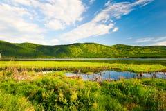 Το υγρό έδαφος Στοκ φωτογραφία με δικαίωμα ελεύθερης χρήσης