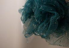 Το υγρό ντους τρίβει στοκ εικόνα με δικαίωμα ελεύθερης χρήσης