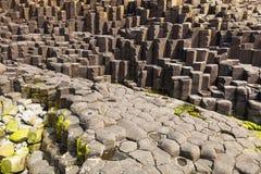 Το υπερυψωμένο μονοπάτι γιγάντων στη κομητεία Antrim της Βόρειας Ιρλανδίας Στοκ Εικόνες