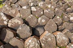 Το υπερυψωμένο μονοπάτι γιγάντων στη κομητεία Antrim της Βόρειας Ιρλανδίας Στοκ εικόνες με δικαίωμα ελεύθερης χρήσης
