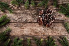 Το υπόβαθρο διακοπών του έλατου Χριστουγέννων διακλαδίζεται, ερυθρελάτες, ιουνίπερος, έλατο, αγριόπευκο, κώνοι πεύκων με το φως στοκ εικόνες