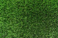 Το υπόβαθρο πράσινο βγάζει φύλλα τον τοίχο κινηματογραφήσεων σε πρώτο πλάνο Ελαφριές και φωτεινές φυσικές εγκαταστάσεις φύσης θερ Στοκ Φωτογραφίες
