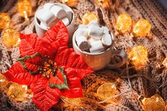 Το υπόβαθρο Χριστουγέννων με το κακάο ή ο καφές με marshmallows σε ένα λευκό κοιλαίνει σε ένα καφετί πλεκτό χειμερινό μαντίλι και Στοκ εικόνες με δικαίωμα ελεύθερης χρήσης