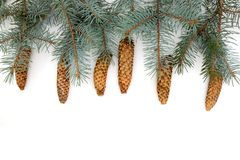 Το υπόβαθρο Χριστουγέννων που απομονώνεται στο λευκό Τοπ όψη στοκ εικόνες