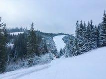 Το υψηλό Tatras είναι όμορφο Στοκ Φωτογραφίες