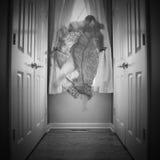 Το φάντασμα Στοκ φωτογραφία με δικαίωμα ελεύθερης χρήσης