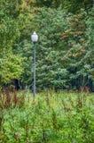 Το φανάρι στο πάρκο Στοκ φωτογραφίες με δικαίωμα ελεύθερης χρήσης
