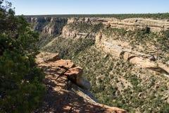 Το φαράγγι απότομων βράχων αγνοεί στο εθνικό πάρκο Mesa Verde στοκ φωτογραφία